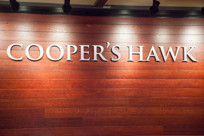 coopers-hawk-1-of-1